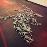 """""""Caimano"""" 2011 400 coccodrilli in fusione di alluminio installazione dimensione ambiente"""