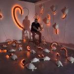 Installazione, G.A. e tartarughe felici  (studio dell'artista) installazione grandezza ambiente